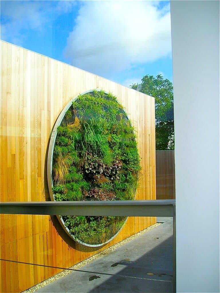 Verticale tuin hoe maak je deze zelf en wat is het onderhoud for Tuinontwerp intratuin
