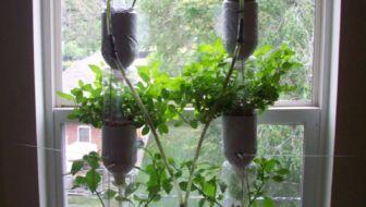 raamtuin voorbeeld - window farm