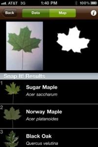 iphone app voor de tuin - leafsnap