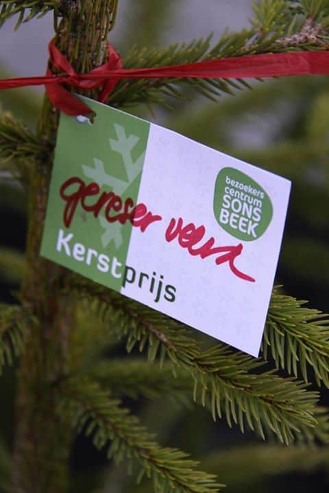 Kerstboom Huren Hier Kan Het En Dit Kost Het Tuin En Balkon