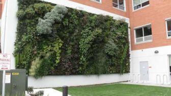 Verticale Tuin Maken : Verticale tuin u pagina van u tuin en balkon