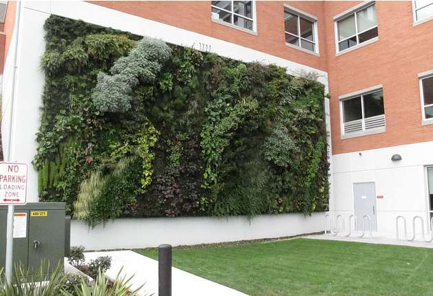 Win een gratis verticale tuin tuin en balkon