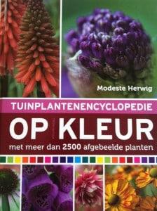 tuinplanten op kleur - 1