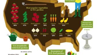 US-tuinieren-infographic