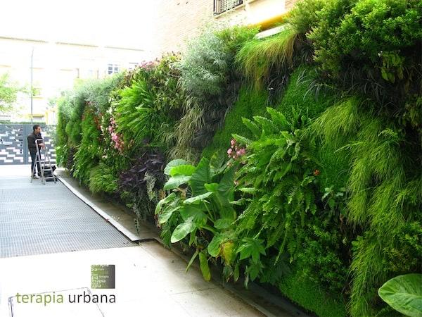 Een hele rij met panelen gevuld met planten