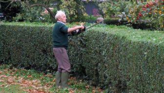 Je dakterras of tuin aanleggen met verlaagde BTW