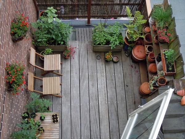 Tuinieren Op Balkon : De beste planten voor op je balkon tuin en balkon