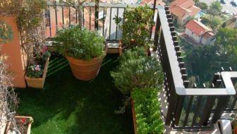 Groendak tuin en balkon for Tuinontwerp door studenten