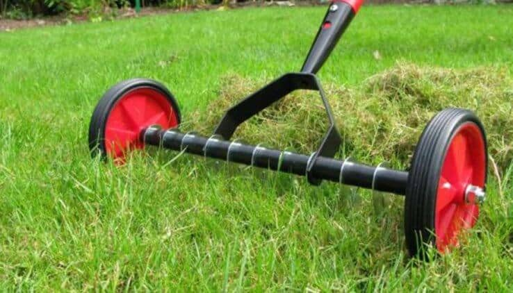 Gras In Tuin : Gras tuin vandaag