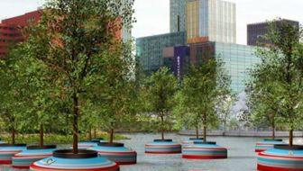 Rotterdam krijgt een dobberend bos