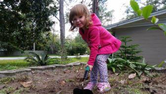 Gratis offertes voor tuinontwerp, tuinrenovatie en tuinonderhoud