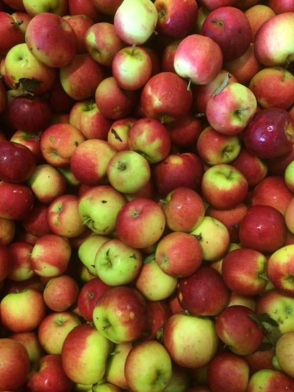 Appels met wat hagelschade, smaakt prima!
