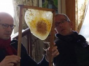 Cursisten bestuderen een honingraat (foto Carla Wilhelm)