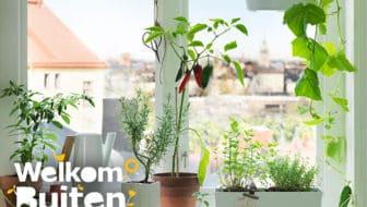 Tips voor tuinieren in de stad tuin en balkon for Kattenpoep in de tuin