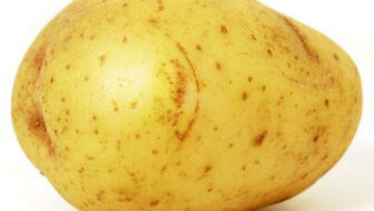 aardappelen in zak kweken