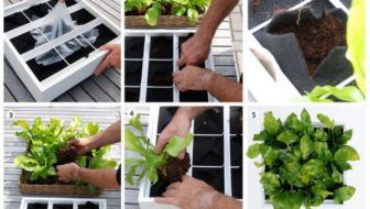Verticale tuin die modulair op te bouwen is: ideaal!