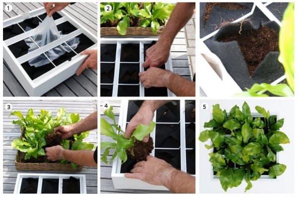 Verticale Tuin Binnen : Deze modulaire verticale tuin is ideaal tuin en balkon