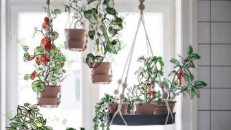 Duurzame hydrocultuur kweekset van Ikea