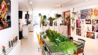 Een modellenbureau voor planten