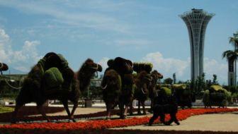 De Wereldtuinbouwtentoonstelling Expo 2016 in Turkije: Noa was erbij!