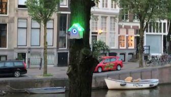 Vogelhuisje geeft gratis wifi bij goede luchtkwaliteit