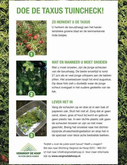 taxus-tuincheck-snoeien-tegen-kanker