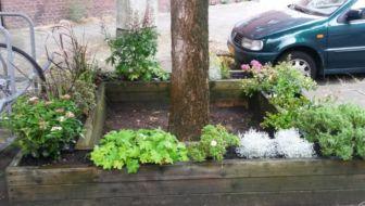 Tuinvraag: Hoe geef je water aan plantenbakken op de openbare weg?