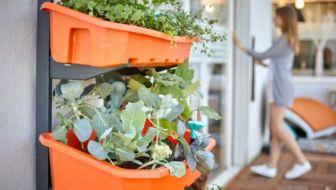 Tuinieren op elk balkon of andere kleine ruimte met deze verticale moestuin