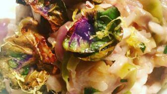 Risotto met paarse spruitjes