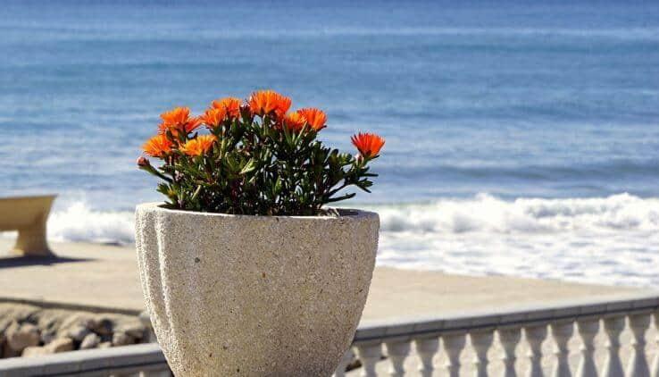 Duurzame bloempotten