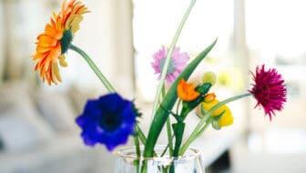 Flower constellations maakt Ikebana-bloemschikken eenvoudig