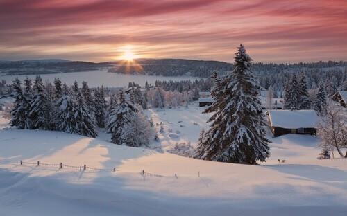 kerstboom canvasprint noorwegen zonsopgang