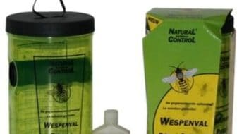 wespenvanger-ecologisch-natural-control